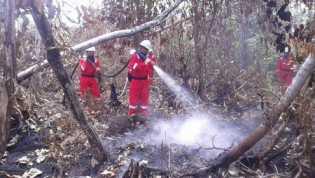 Musim Hujan, 50 Hektare Lahan di Bengkalis Terbakar