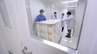 Vaksin Covid-19 Sinovac Mulai Tiba di Sejumlah Provinsi