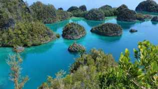 Mau Tahu Destinasi Diving and Adventure Unggulan di Indonesia