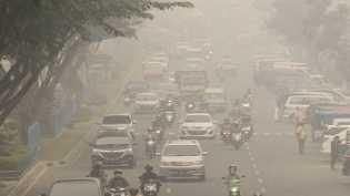 Kabut Asap Karhutla, Masyarakat Riau Keluarkan Petisi