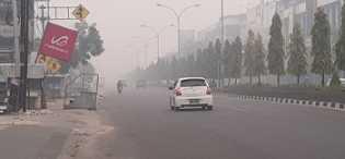 Riau Berstatus Darurat Pencemaran Udara, Pemko Pekanbaru Anjurkan Seluruh Instansi Beri Dispensasi K