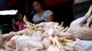 Riset Terbaru, Terungkap Cara Turunkan Kolesterol Daging Ayam