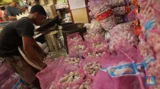 Bawang Putih Impor China Segera Masuk RI