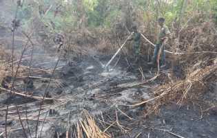 Sejumlah Lahan Gambut Rimbo Panjang Terbakar
