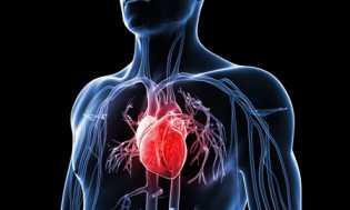 Makan Malam di Atas Pukul 19 Tingkatkan Risiko Jantung
