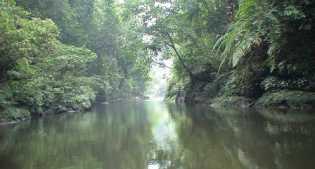 Bukit Tigapuluh, Wisata Riau Miliki Keanekaragaman Lengkap