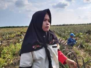 Jikalahari dan Walhi Desak Gubernur Riau Cabut Sejumlah Pasal di Perda RTRW
