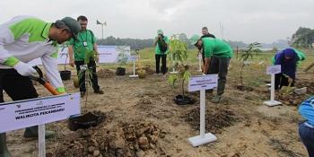 Ribuan Tanaman Produktif dan Pohon Pelindung Ditanam di Pekanbaru